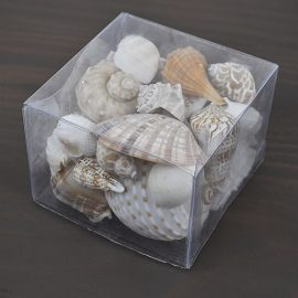 Clear box cream shells