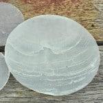 Capiz round (windowpane oysters)
