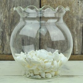Glass Bubble Bowls with shells