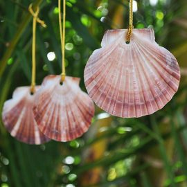 Christmas decorations scallop