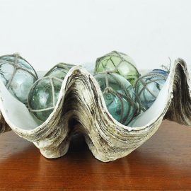 Vintage Polyresin Clam shells