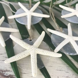 Snowflake Capiz Starfish Christmas Decorations