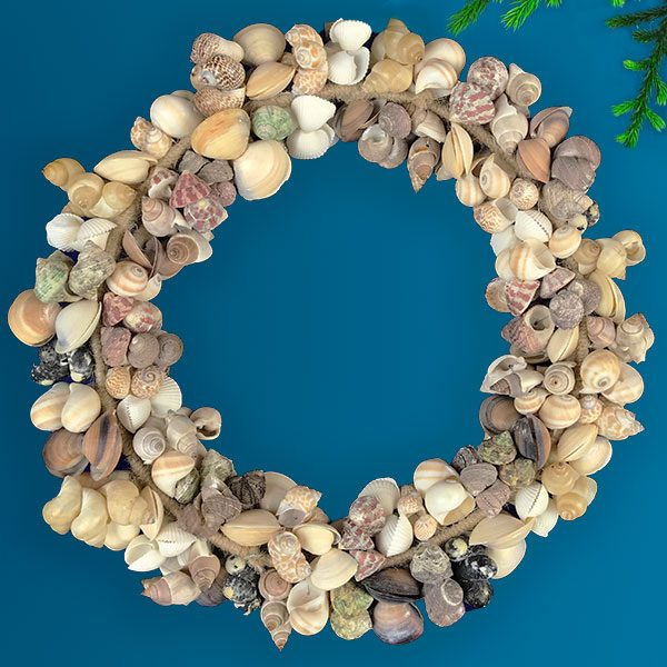 Wired Wreath with coloured shells