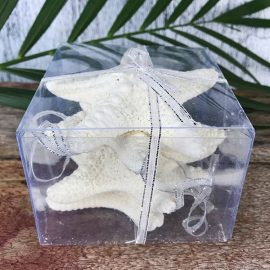 Decoration natural starfish jungle - square with ribbon