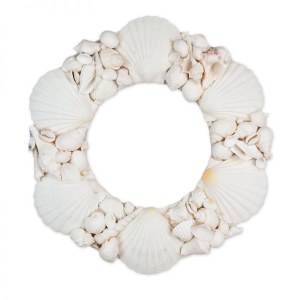 Wreath shell round scallop with assorted white shells