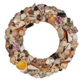 Wreath shell round scallop with assorted coloured shells