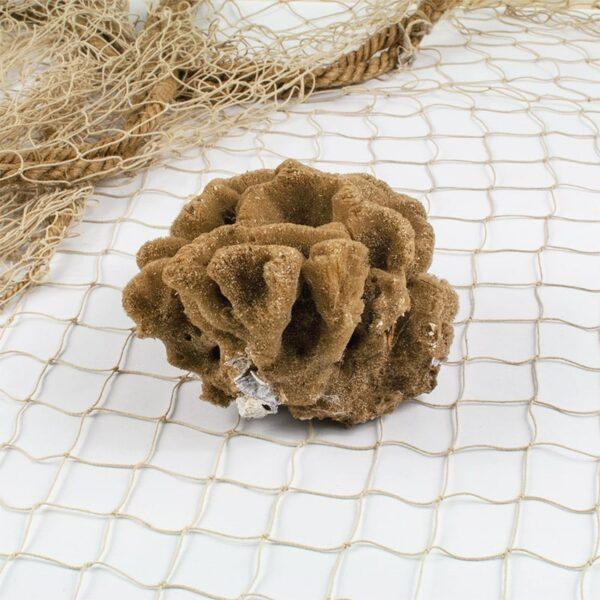 Natural Small Sea Sponge