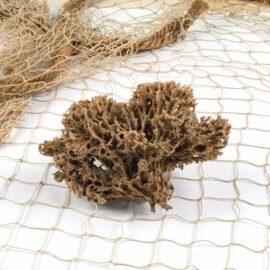 Natural Small Sea Sponges